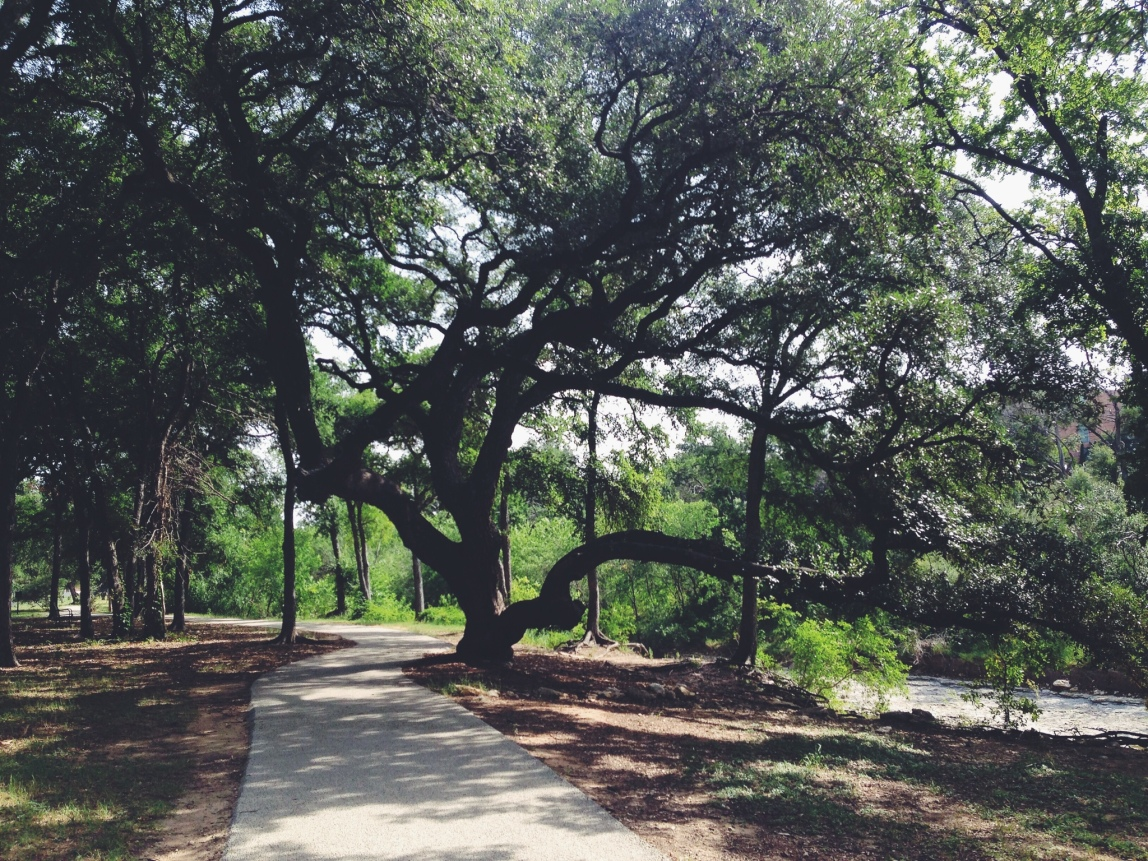Shoal Creek Trail