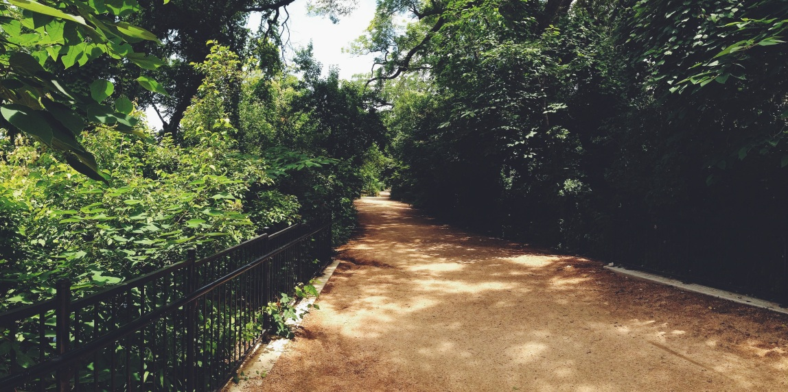 Lady Bird Lake Trails