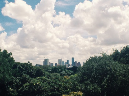 View from Zilker Botanical Gardens